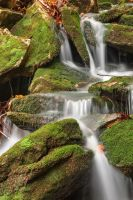 Mossy Rohrbaugh Waterfall by somadjinn