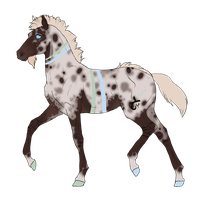 N2839 Padro Foal Design by casinuba