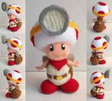 Captain Toad by ToodlesTeam
