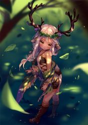 [+Video] Commission - Forest Treasure by Hyanna-Natsu