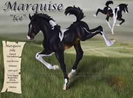 little Marquise by FlareAndIcicle