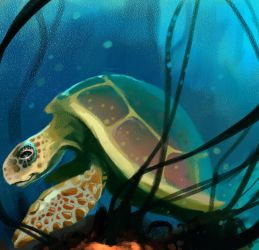 Sea Turtle by FosterCreativity101