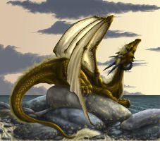 Forever Dragon by Foshu