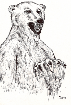 Polar Bear Ink by MikeYoungster