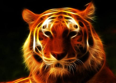 Tiger Fractal by JPeiro