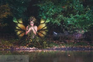 Woodland Fairy by lhallow