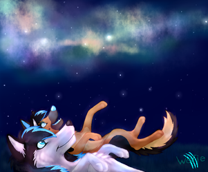 Counting the stars by WolfieMoonscar