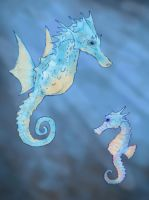 Horsea and Seadra