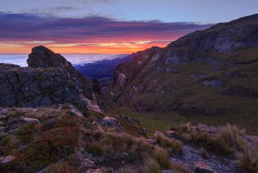 Tuthumi pass by carlosthe
