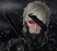 raiden by revoltless