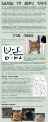 Cat Tutorial: Heads by Uncognoscente