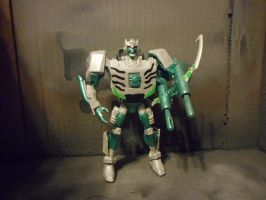 Transformers Animated Beast Wars Tigatron by GRIMLOCKPRIME108