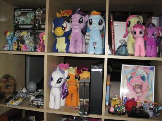 Ponified Bookshelves by KaidanDelRose