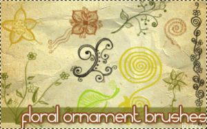 Floral ornament brushes by claraXY