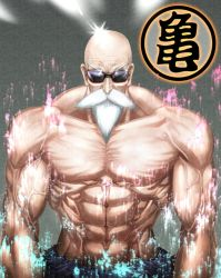 Master Roshi in color by luckfield