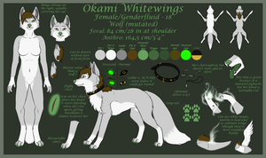 Okami Reference 2014 by OkamiWhitewings