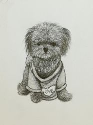 Puppy Doodle by Juywu
