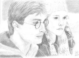 Harry and Hermione by yulss