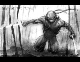 Leonardo : Dawn of the Ninja by RayDillon