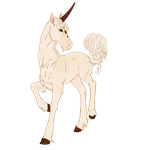 B071 Conquerant the Sorcerer Foal Ref by AntiqueFyreStables