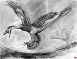 Pedopenna daohugouensis sketch by cheungchungtat