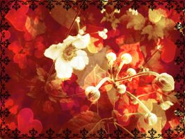 Flowers Edit by blackroselover