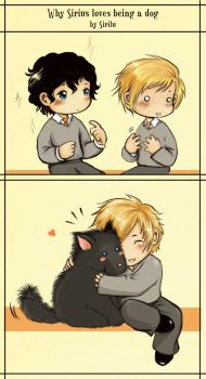 Why Sirius loves being a dog by Sirilu