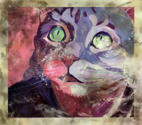 Spike the cat painting (aged) by KazFoxsen