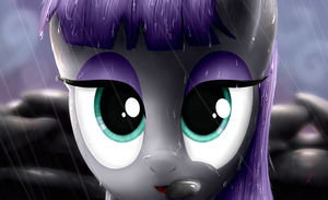 Maud by everypone