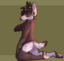 New sweater by Caffeyeen