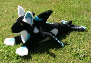 Orca hybrid front view by Bladespark