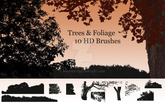Trees and Foliage Brushes for Photoshop by morosity