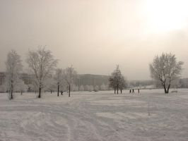 Winter Scenes 6 by andreym24