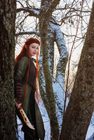 Daughter of the Forest by StarbitCosplay