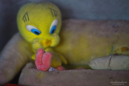 Dirty Tweety Bird by demdam07