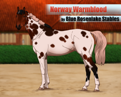 .: Norway warmblood foundation import :. | Admin 2 by Pashiino