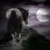 HEE Horse Avatar | Moonlight Appy {Full-Size} by Elegant-Designs