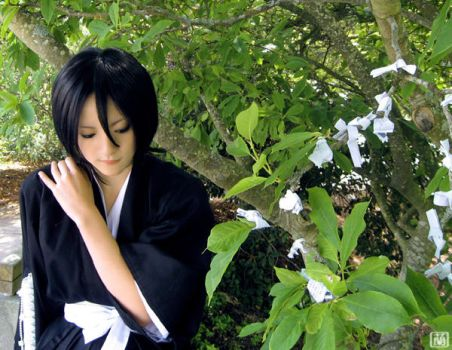Kuchiki Rukia - Make a Wish by Ranmaru-Mori