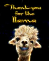 Llama Thank You by DuneDrifter
