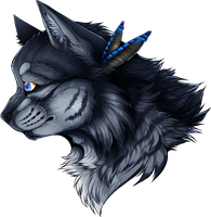 [Warrior Cats]  Jayfeather by NeCroven
