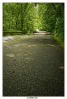 road to nowhere by doverby