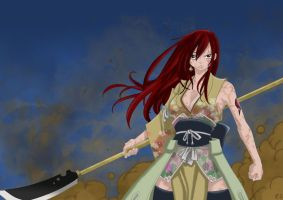 Erza Scarlett, Fairy Tail by EvilBust3r