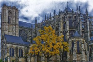 Cathedral Of Le Mans Sarthe France by hubert61