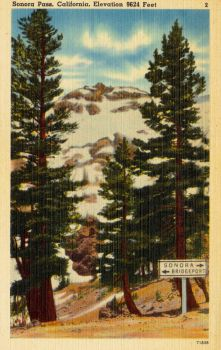 Vintage California - Sonora Pass by Yesterdays-Paper