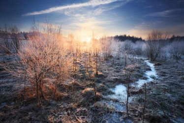 Cold Kingdom by FlorentCourty