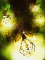 Fireflies by T-Apostate