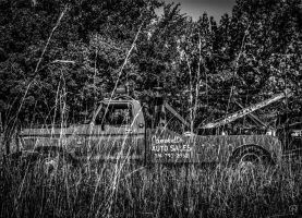 Tow Mater? by FabulaPhoto