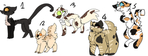 Warriors Adopts by Hot---Chocolate