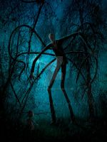 Slender Man and the Lost Soul by Quest007