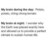 432228633-funny-picture-potato-brain-day-night by AstraAurora